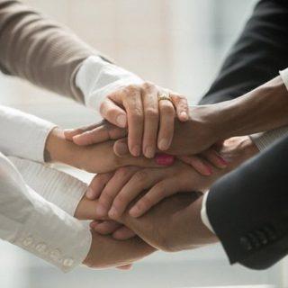 Organization…or Social Enterprise?