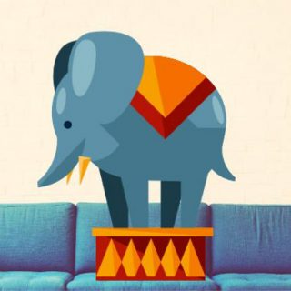 Tackling the Elephant in the Room