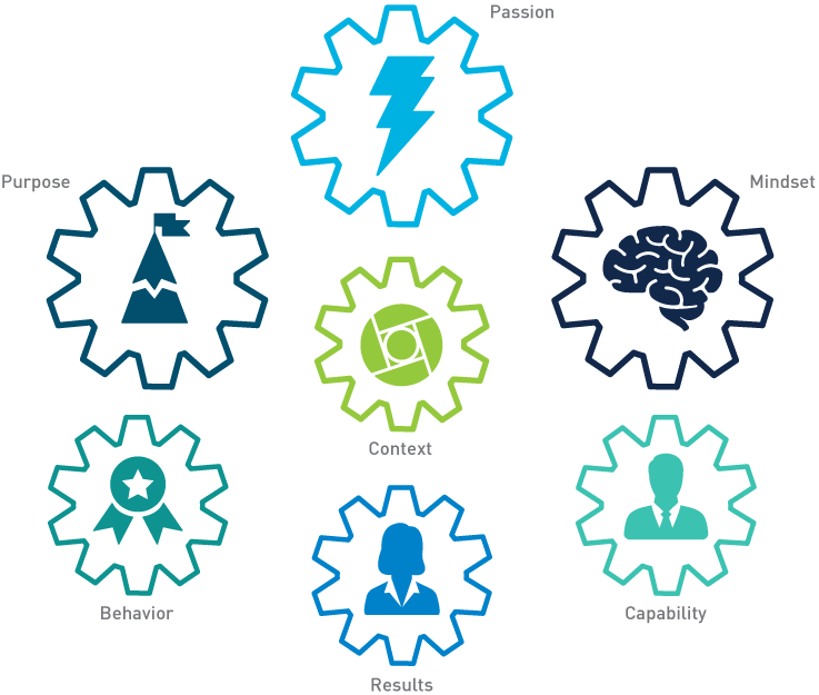 the whole person model infographic